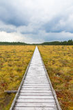 Nature trail to a wooden footbridge Stock Photo