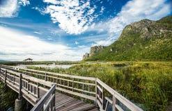 The Nature Trail Wooden Bridge. Stock Image
