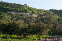Nature travel in Israel Royalty Free Stock Photography