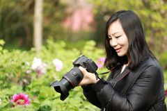 Nature travel photographer woman with Sunshine in spring, looking at carmer screen. Asian chinese Woman Nature travel photographer woman taking pictures in Stock Images