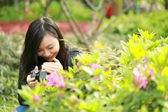 Nature travel photographer woman with Sunshine in spring, looking at carmer screen. Asian chinese Woman Nature travel photographer woman taking pictures in Royalty Free Stock Image