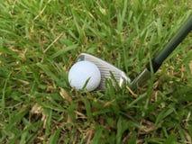 Golf club on green grass Royalty Free Stock Photos