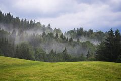 Nature, Tree, Sky, Mountainous Landforms Royalty Free Stock Photography