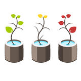 Nature tree symbol illustration Stock Image