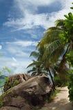 Nature tropicale Image libre de droits