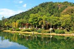 Nature tropicale près de lac Photos stock