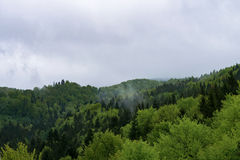 Nature in Tustan. Lviv region. May month Royalty Free Stock Photos