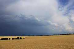 Cloudy over the field Royalty Free Stock Photography
