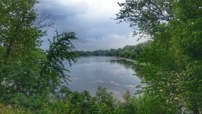 Nature. Ukraine, river, forest, green stock image