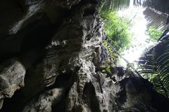 Nature in Uthai Thani, Thailand royalty free stock photos