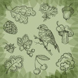 Nature. Vector illustration. Nature. authors illustration in Royalty Free Stock Photo