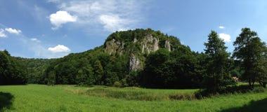 Nature, Vegetation, Ecosystem, Nature Reserve royalty free stock photography