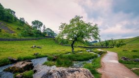 Nature, Vegetation, Nature Reserve, Mountainous Landforms