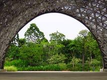 Nature, Vegetation, Tree, Leaf royalty free stock photography