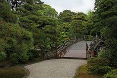Nature, Vegetation, Tree, Leaf stock images