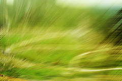 Nature verte de tache floue Image libre de droits