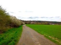 Nature verte et bonne sur le chemin Photo libre de droits