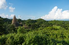 Nature verte partout avec une pagoda en construction photo libre de droits