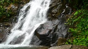 Nature video, a small waterfall in the forest. The water flow through the rocks after the rain. Waterfall hidden in the forests of. Nature video,A small stock video footage