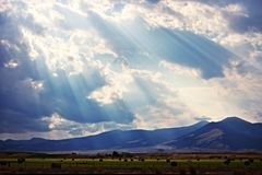 Nature view. Beautiful sunlight made beautiful nature view stock photography