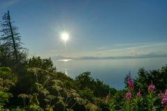 Nature view with Blue Sky Homer spit, Kenai Peninsula Alaska Uni royalty free stock images