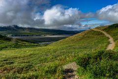Nature view with flowers and a path and clouds in Denali Nationa Stock Image
