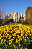 Nature view of park in Burnaby Stock Photography