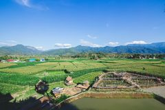 Nature view in thailand royalty free stock photos