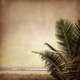 Nature-14. Vintage nature background in summer style Royalty Free Stock Photos