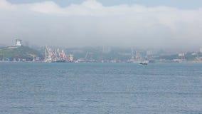 Nature of Vladivostok. Primorsky Krai stock video