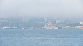 Nature of Vladivostok. Primorsky Krai stock footage