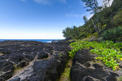 Nature and volcanic rocks in the south coast of Reunion Island Stock Image
