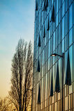 Nature VS Urban, Modern office building Stock Image
