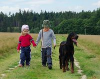 Nature walk. Little girl and boy with dog Royalty Free Stock Photography