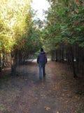 Nature walk royalty free stock photo