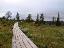 Nature walk in Lapland near hotel Stock Photo