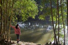 Nature Watching Girl Stock Photos