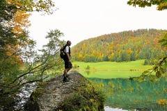 Nature, Water, Yellow, Tree Royalty Free Stock Photos