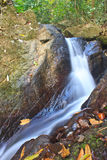 Nature waterfall in deep forest Royalty Free Stock Image