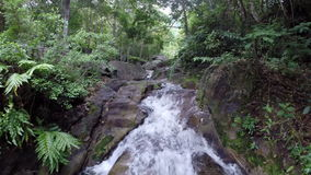 Nature waterfall in deep forest stock video