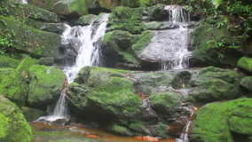 Nature waterfall in deep forest stock video footage