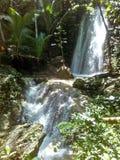 Nature waterfalls stock image