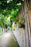Nature way. And peaceful in thai royalty free stock photography