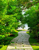Way to beach in tropical resort Stock Images
