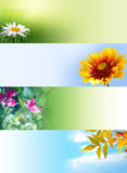 Nature web banners Stock Image
