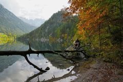 Nature, Wilderness, Leaf, Reflection stock photo