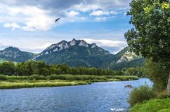 Nature, Wilderness, Nature Reserve, Mount Scenery Stock Photography