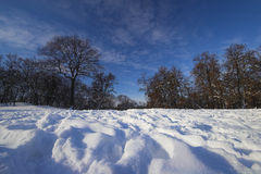 Nature in winter. Natural landscape covered with snow and beautiful sky Royalty Free Stock Photos
