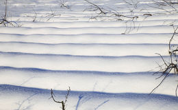 Nature in winter Royalty Free Stock Image