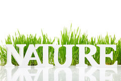 Free Nature With Fresh Grass Royalty Free Stock Photo - 36940645